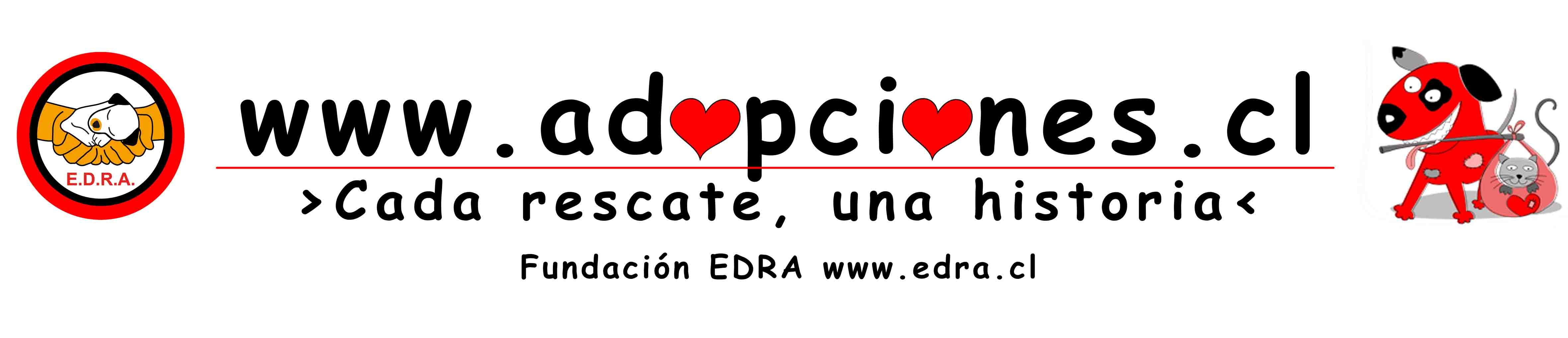 Cada rescate, una historia. Fundación EDRA